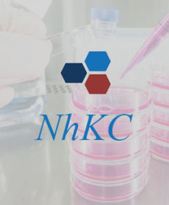NhKC Cortical Kidney Research Cell | Novabiosis