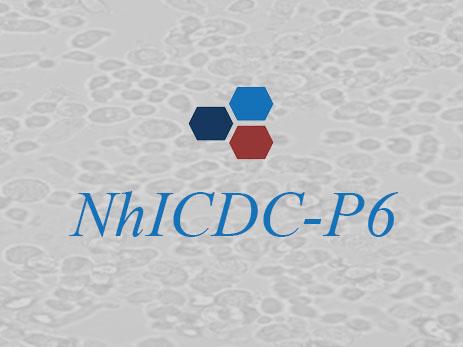 NhICDC-P6