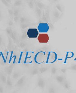 NhIECD-P4