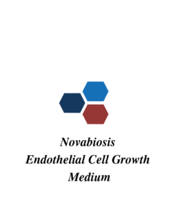 Endothelial Cell Growth Medium
