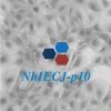 NhIECJ-p10